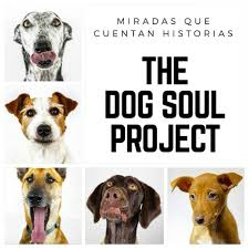 The Dog Soul Project Bitxos Veterinaris Alella